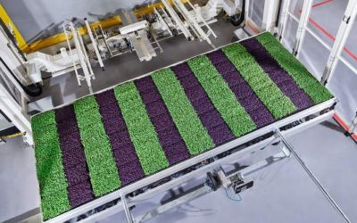 The vertical farming industry is growing deeper roots