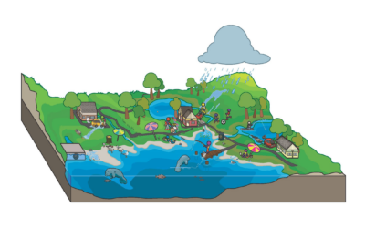Watershed Planning and Water Quality Studies
